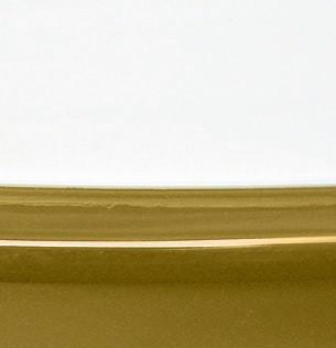 Bianco Ottico Lucido / Senape Lucido - P799-P13P