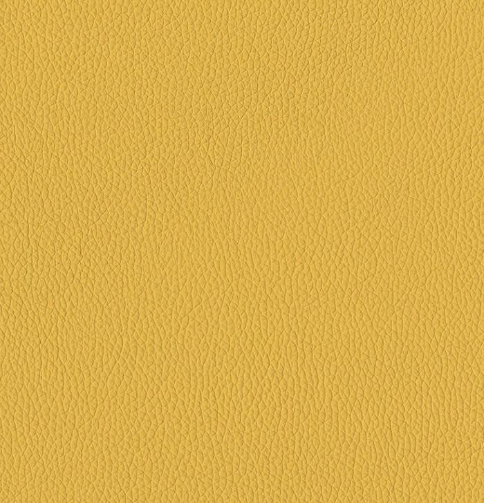 P_4 - giallo