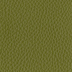 P_46 - verde pino