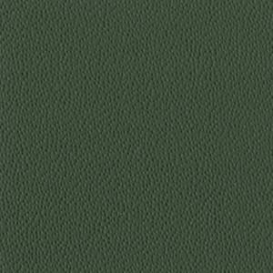 PF_42 - verde scuro