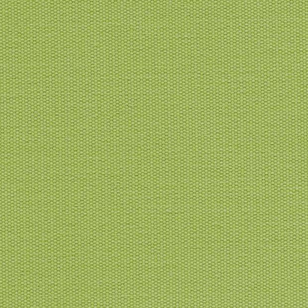 Lime 061