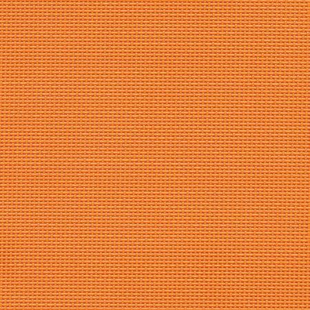 Mandarino 083