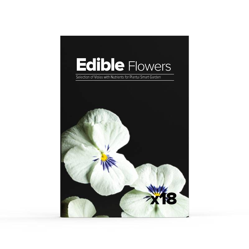 Edible Flowers - 6 differenti viole